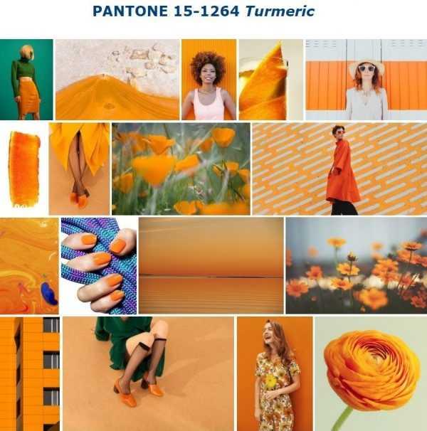 Цвет 2019 года Turmeric