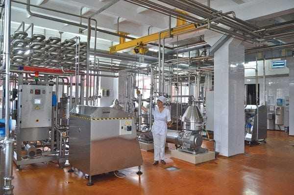 Производство казеинового клея