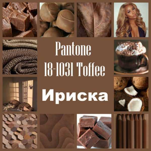 Оттенок 18-1031 Toffee