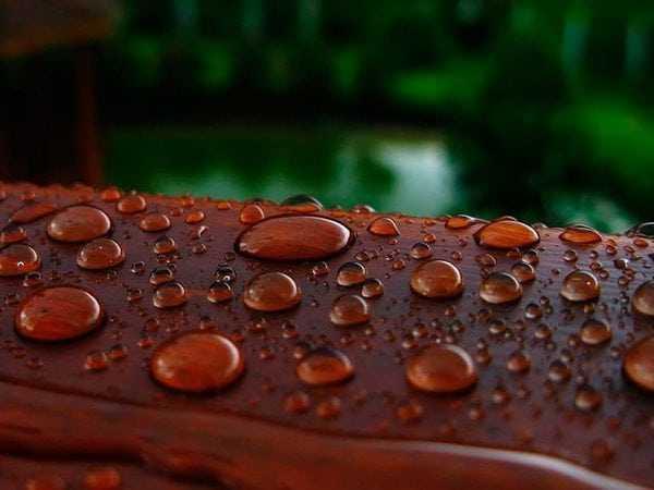Капли воды на деревянной поверхности